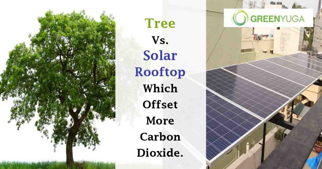 Tree vs Solar Rooftop