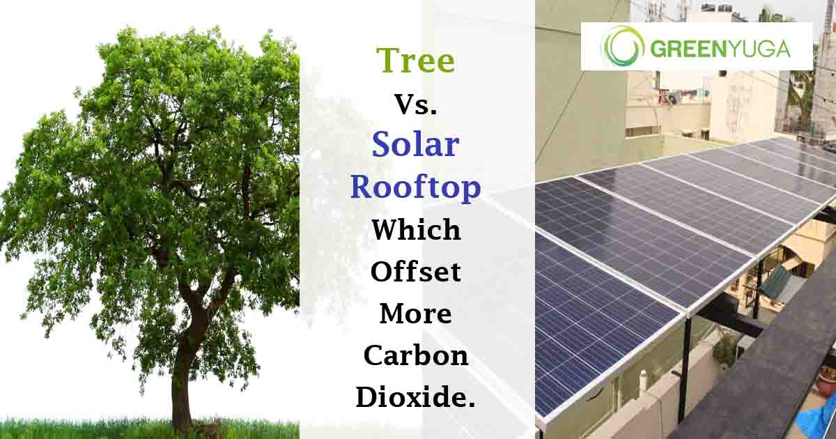 Tree Vs. Solar Rooftop, Which Offset More Carbon Dioxide.